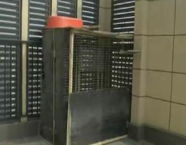 西安鸽友楼顶天台建鸽棚 物业