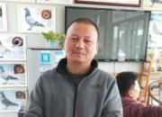 记上海宝钢首战冠军:巨资引进种鸽 连年战绩辉煌