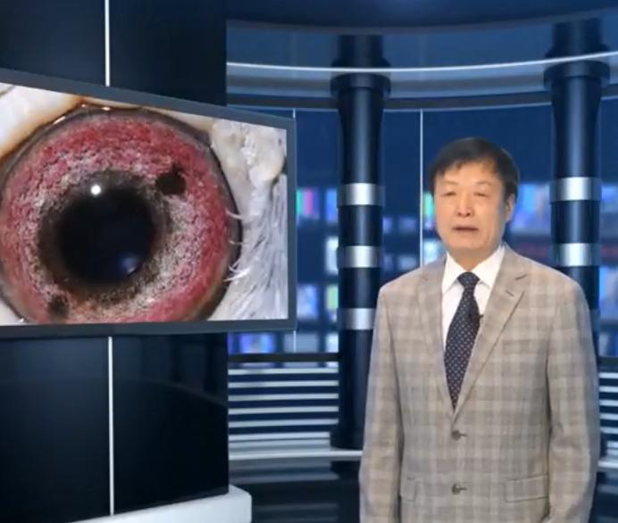《赛鸽探秘》视频节目:鸽眼在
