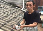 江苏千公里高位获奖鸽 再夺超远程南京冠军
