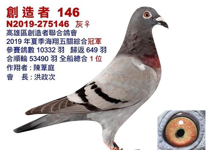 残酷海翔!台湾五万多羽全船总