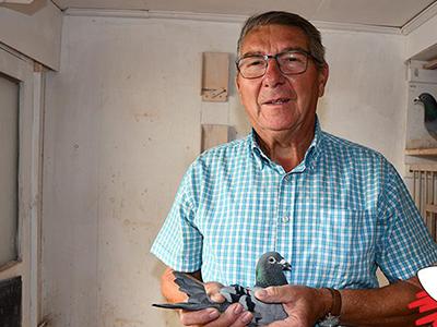 72岁维克的养鸽之道 实力斩获中长距离鸽王