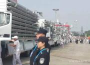 北京公安讲述国庆安保:给和平鸽安检 跟撸猫差不多