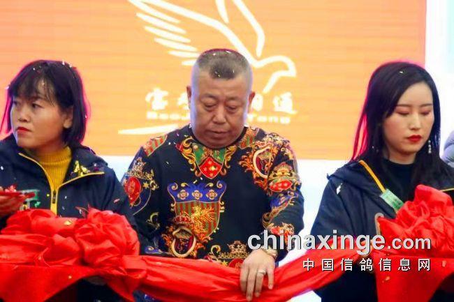 陕西赛鸽再添新员 搏羽通赛鸽俱乐部盛大开业