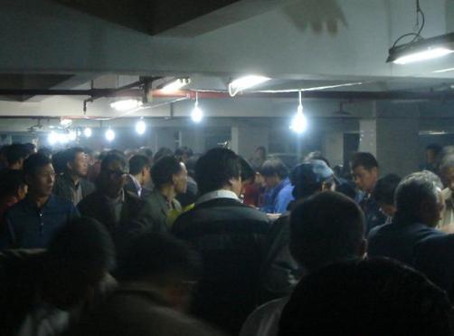 上海幼鸽特比赛售环为何逐年下降?