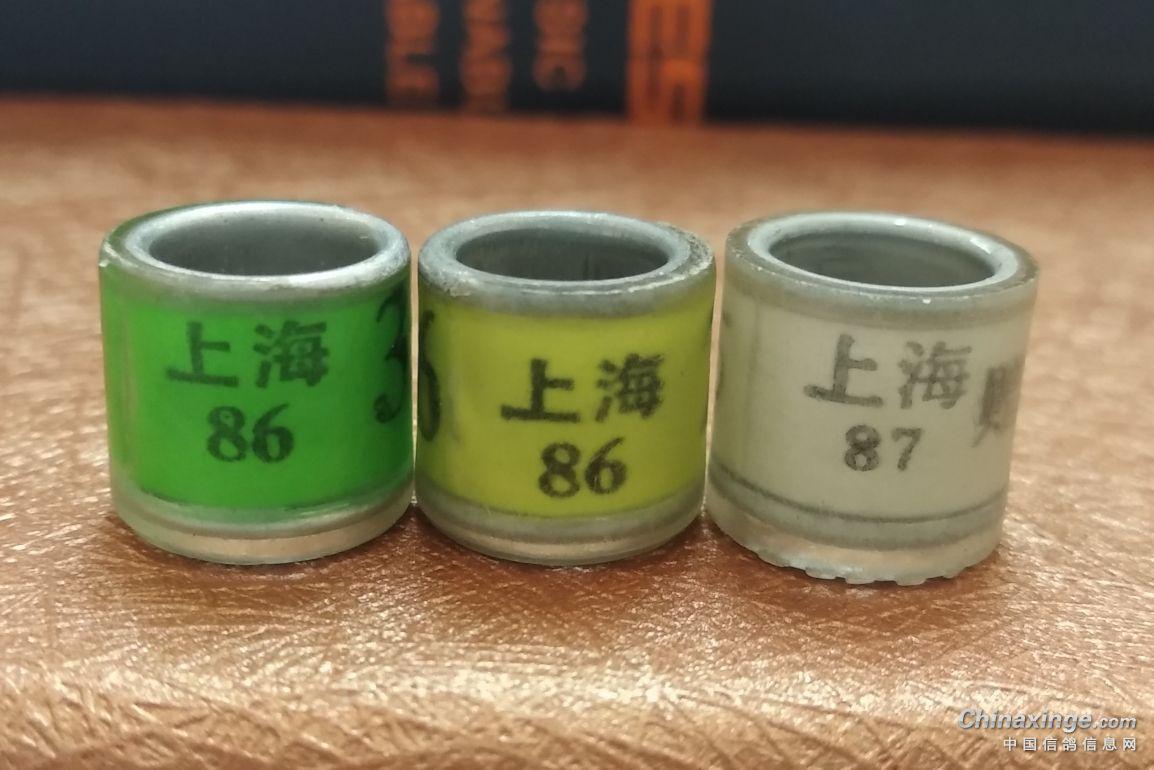 上海前辈留下的旧奖状 老脚环
