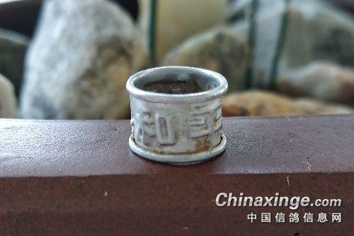 上海早期铝制足环 与诸君分享