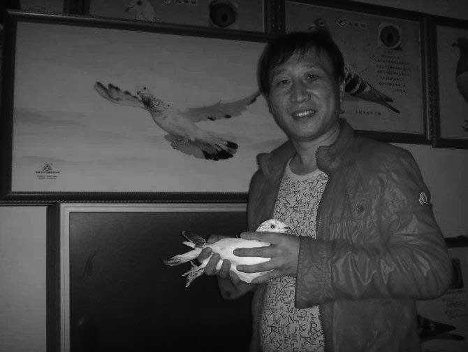 一羽苍白打天下!中国兆尊馆胡维奇老师去世