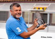 2020年巴塞罗那:亮点话题多多 各国冠军鸽品鉴