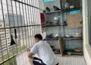 小小阳台做改造 鸽子又能住新房