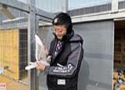 内蒙古阿拉善有群养鸽人