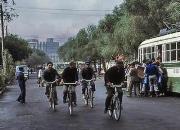 疯狂旧事:为摸一下外国鸽 骑车百公里