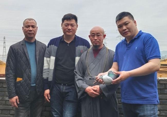 佛寺中的鸽者 访正阳寺住持乘持大师