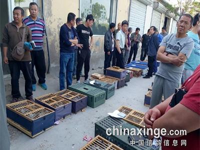 支持北京全市联翔 开创者携手