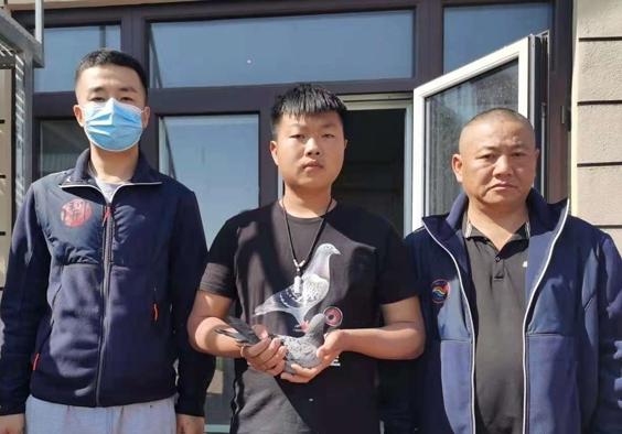 天津开创者二关:院外二雷的冠军鸽
