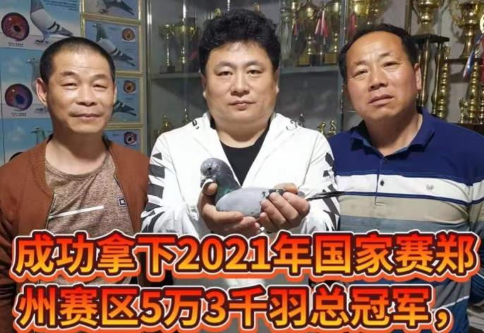 桑杰士配奶酪!上海国家赛冠军归巢当晚被高价收购