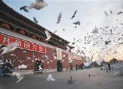 关棚限飞禁飞!今天起北京这9个区域设为净空区