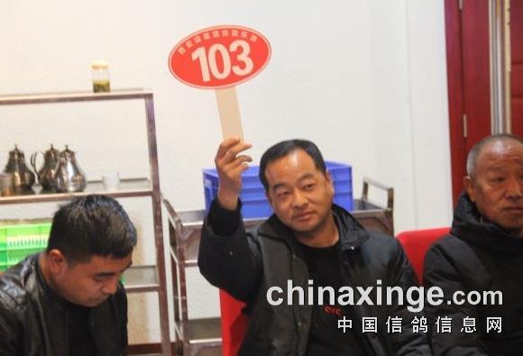 崔武涛:卖好鸽子、流好名声!