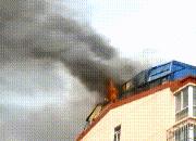 """安全最关键!廊坊一楼顶""""鸽子窝""""起火"""