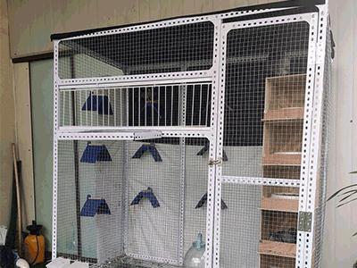 新建小型鸽棚 附设计图、材料清单