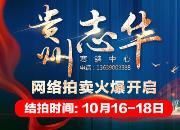 正在竞拍:飞越山区王者加冕 贵州志华获奖鸽纯网拍