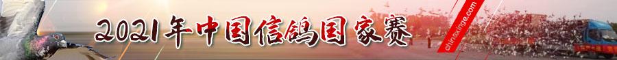 2021年中国信鸽国家赛